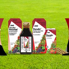 floradix tabletten ijzer elixer moe vermoeihdied floravital